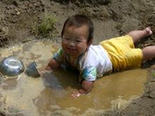 泥んこはいはい