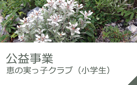 公益事業 恵の実っ子クラブ(小学生)